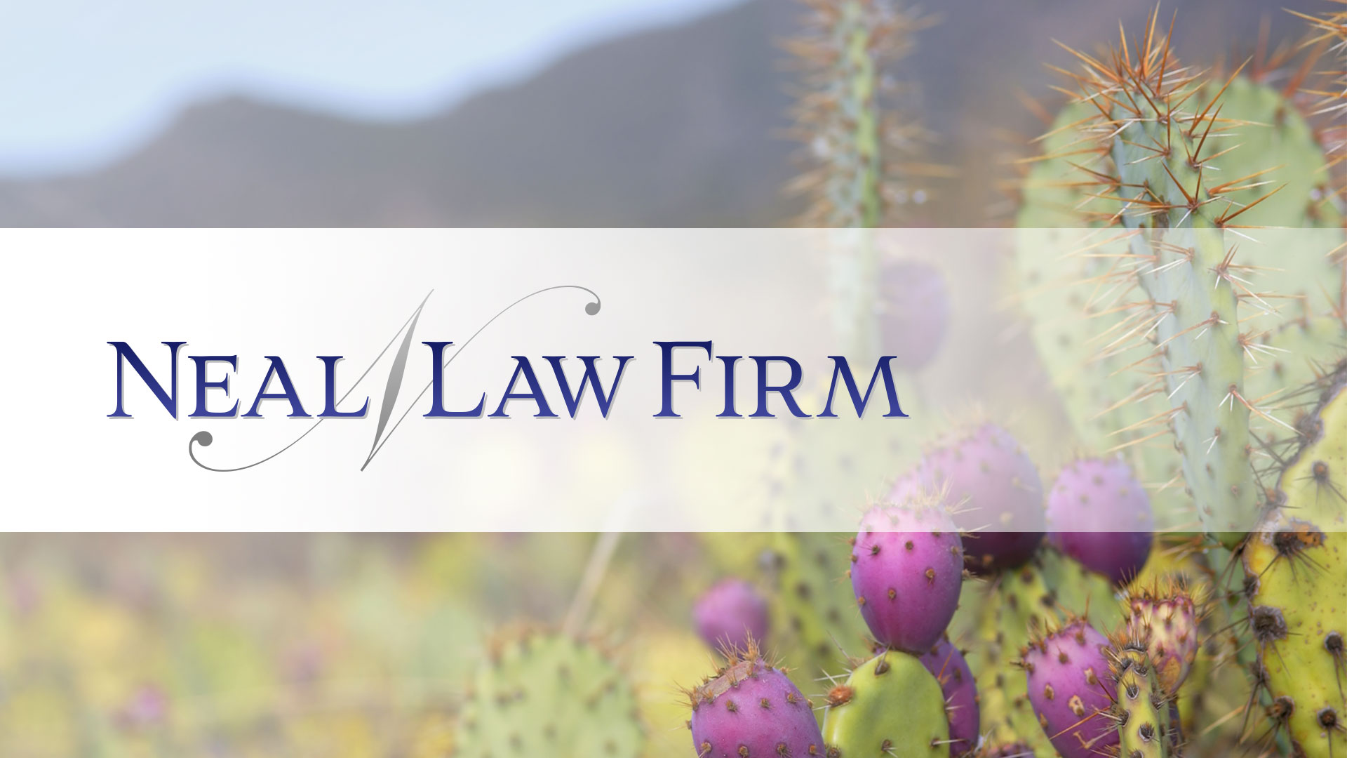 Law Firm Branding and Marketing Design