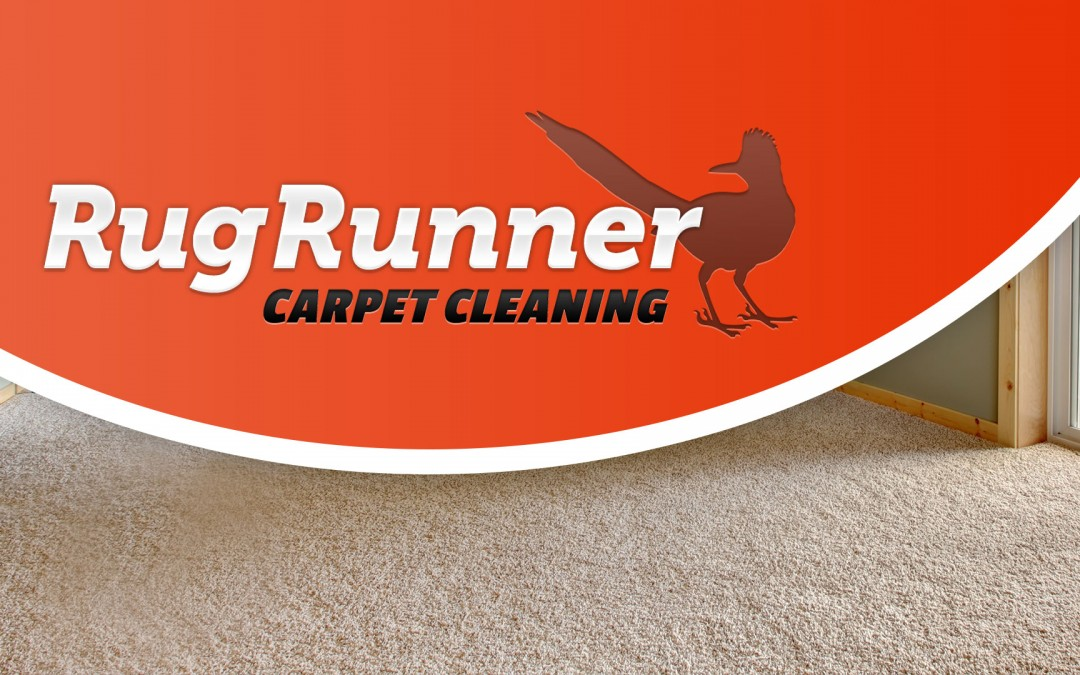 Carpet Cleaner Branding, Marketing, and Design
