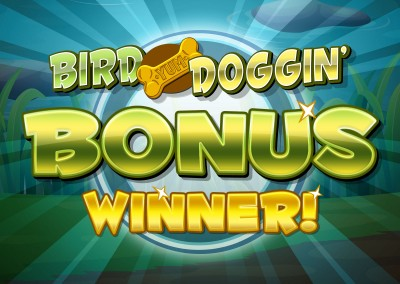Bird Doggin' Bonus trigger screen design
