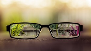 Glasses showing background in focus