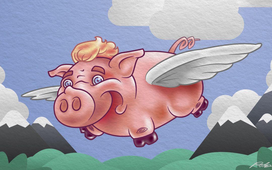 Flying Pig Character Illustration
