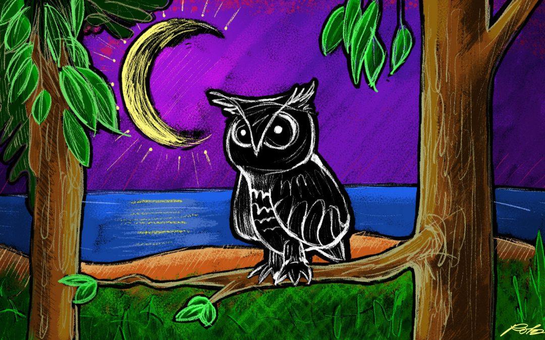 Night Owl Lake Illustration