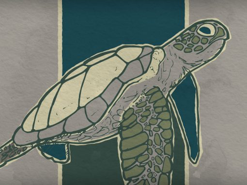 Retro Sea Turtle Illustration